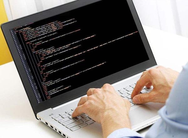 专业的东莞网站建设公司要怎么找呢大脑袋?